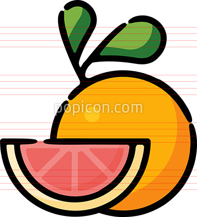 Grapefruit Citrus Fruit Hand Drawn Icon