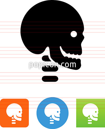 Human Skull And Neck Vertebrae Icon