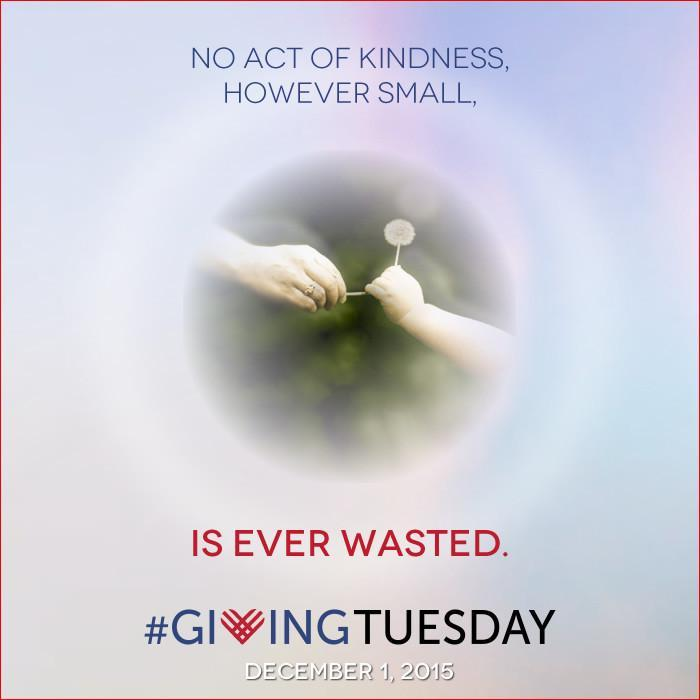 Giving Tuesday. No Act of Kindness is Ever Wasted | Island Thyme Soap Company
