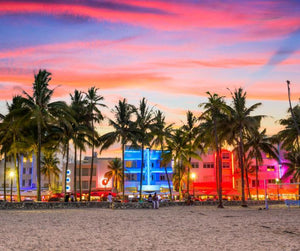 The Essence of Miami's South Beach | Island Thyme Soap Company