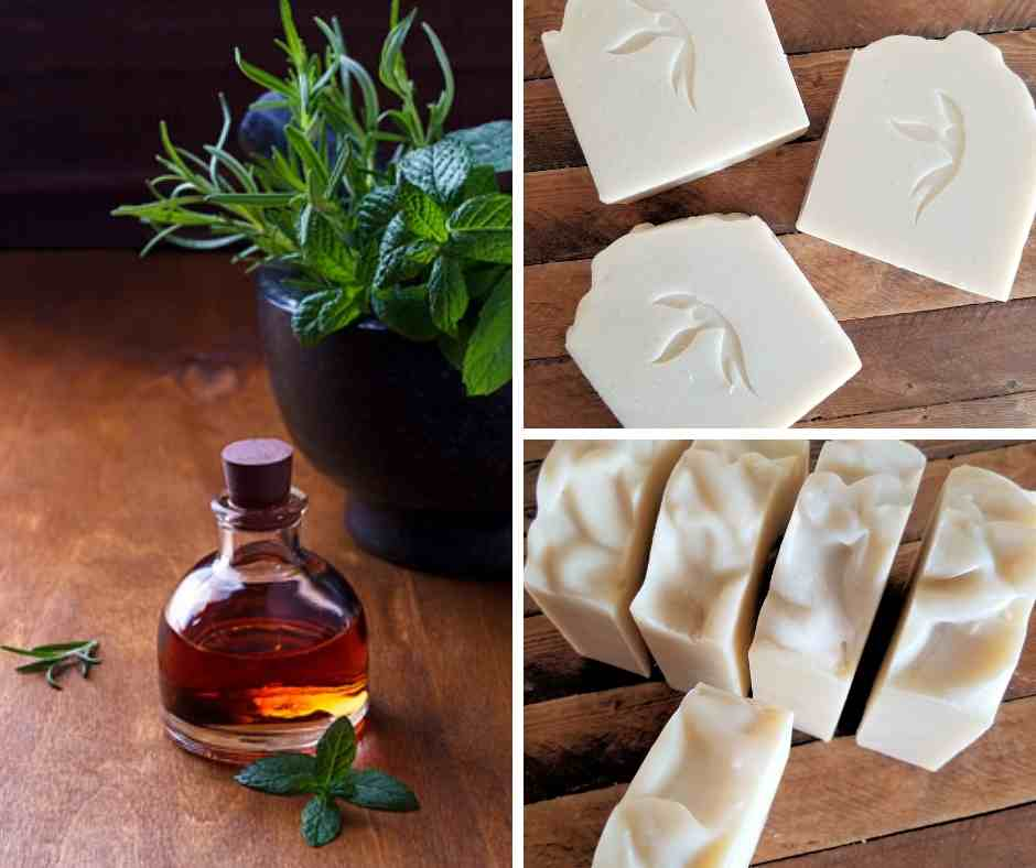 Rosemary Mint Coconut Milk Soap