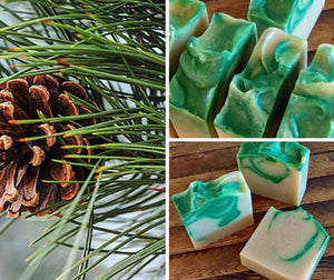 Pinion Pine Forest Soap - Island Thyme Soap Company