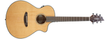 Breedlove Pursuit Concert - Garrett Park Guitars  - 3