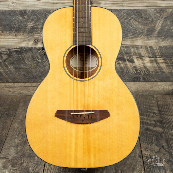 Breedlove Passport Parlor (3/4 size - Great Travel Guitar!) with Gig Bag