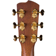 Breedlove Limited Run Premier Concertina Walnut-Walnut