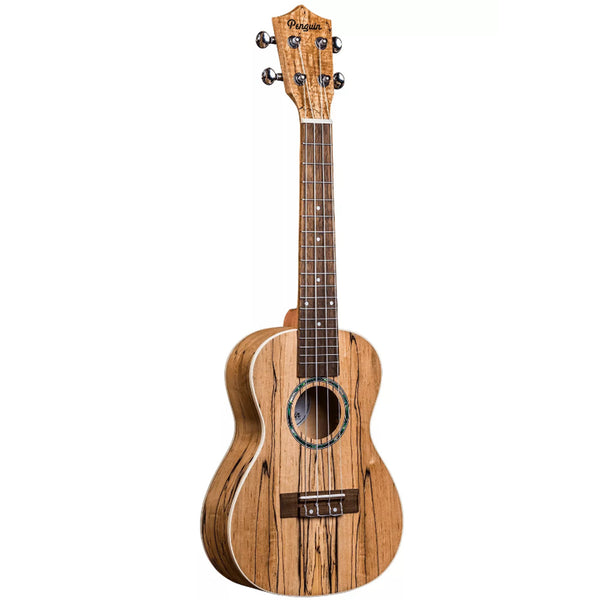 Penguin Classic Spalted Maple Concert Ukulele