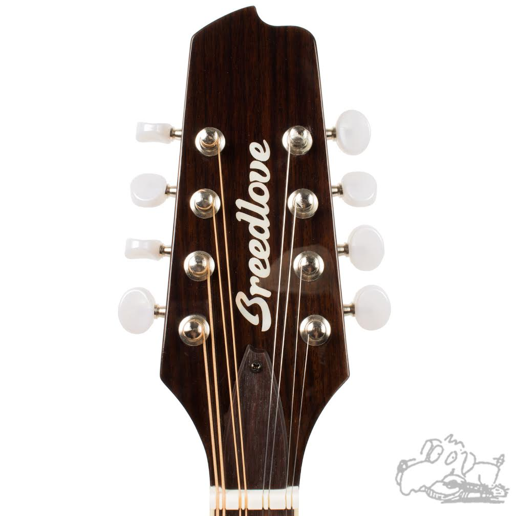 Breedlove Crossover OF VS Mandolin