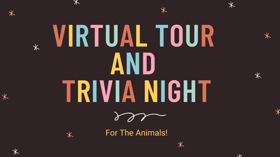 "a graphic that reads ""virtual tour and trivia night for the animals"""