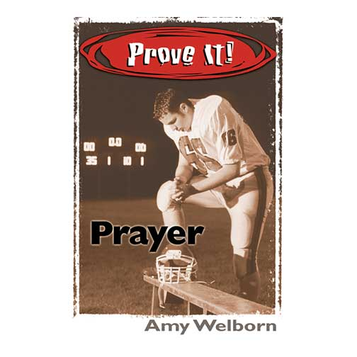 Prove It! Prayer by Amy Welborn