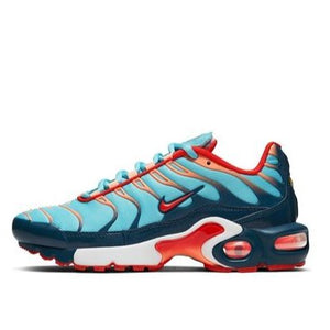 "Nike Air Max Plus ""swoosh Chain"" GS Grade School - airdrizzykicks.com"