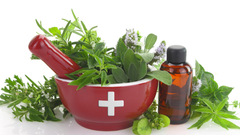 Essential Oils - Nature's First Medicines