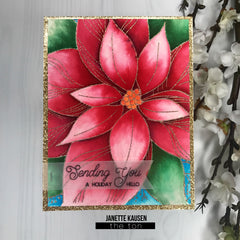 Poinsettia Close Up Cling Background