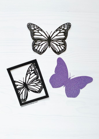 Monarch Butterfly Dies Bundle