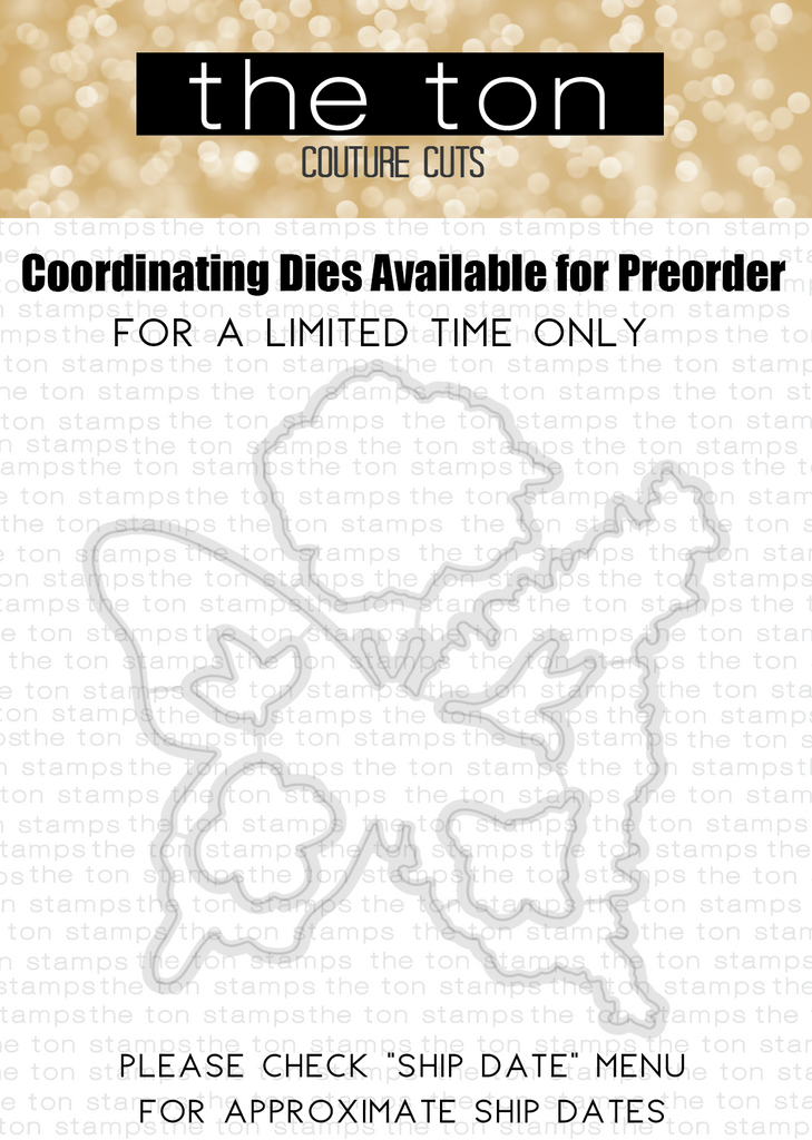 Transformation Coordinating Dies - Preorder // PLEASE READ