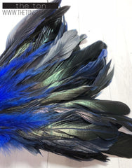Feathers - Blue Long
