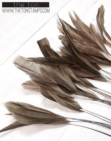 Feathers - Brown Fine