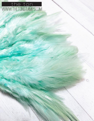 Feathers - Mint Simple