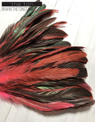 Feathers - Pink Long