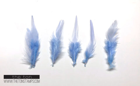 Feathers - Soft Blue Simple