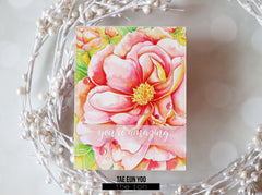 Peony Close Up Cling Background