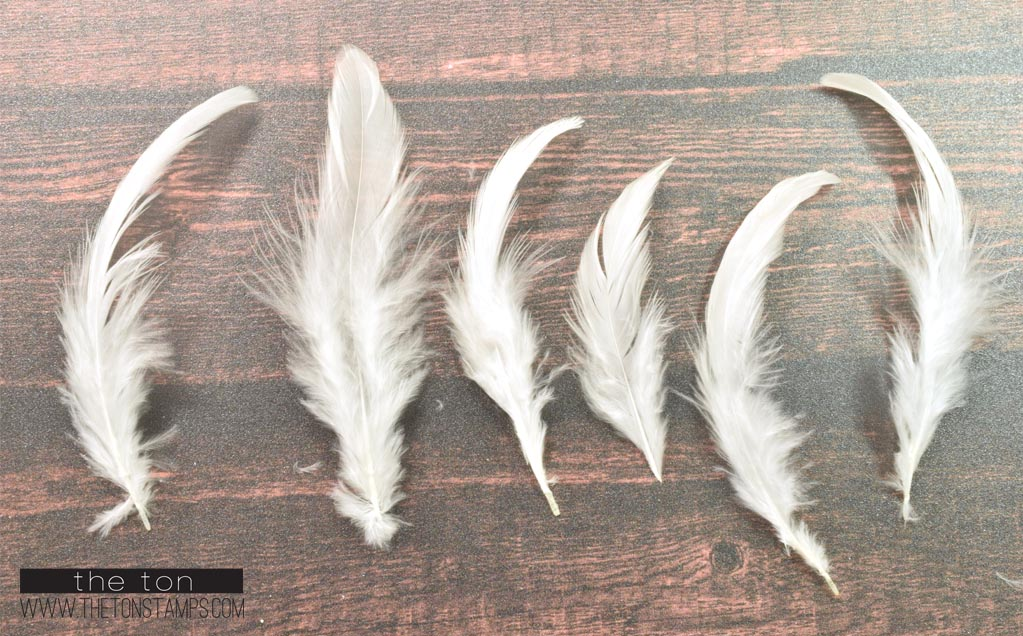 Feathers - White Simple