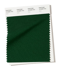 PANTONE 19-6050 Eden Eden is a stately forest green that plays on tradition.