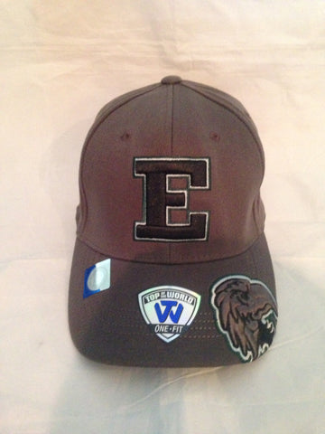 NCAA Eastern Michigan University All Access E Flex Fit Hat