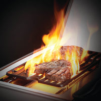 Rogue® SE 625 Edelstahl - Napoleon Grill mit SIZZLE ZONE™ & Infrarot-Heckbrenner