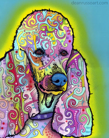 poodle print on canvas poodle print on canvas - Dean Russo