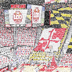 Maryland Terrapins Art