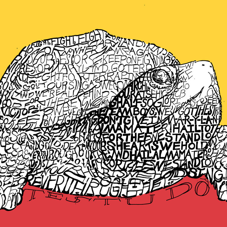 University of Maryland Testudo Wall Art Poster