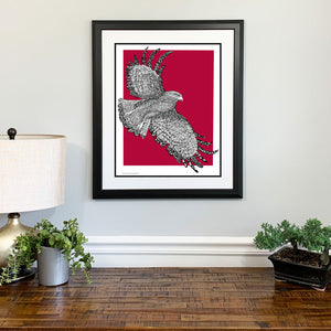 St Joes Hawk Gift Framed