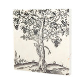 Grape Vine Drink Coaster - 605