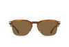 Wiley Alchemy Sunglasses (2 colors)