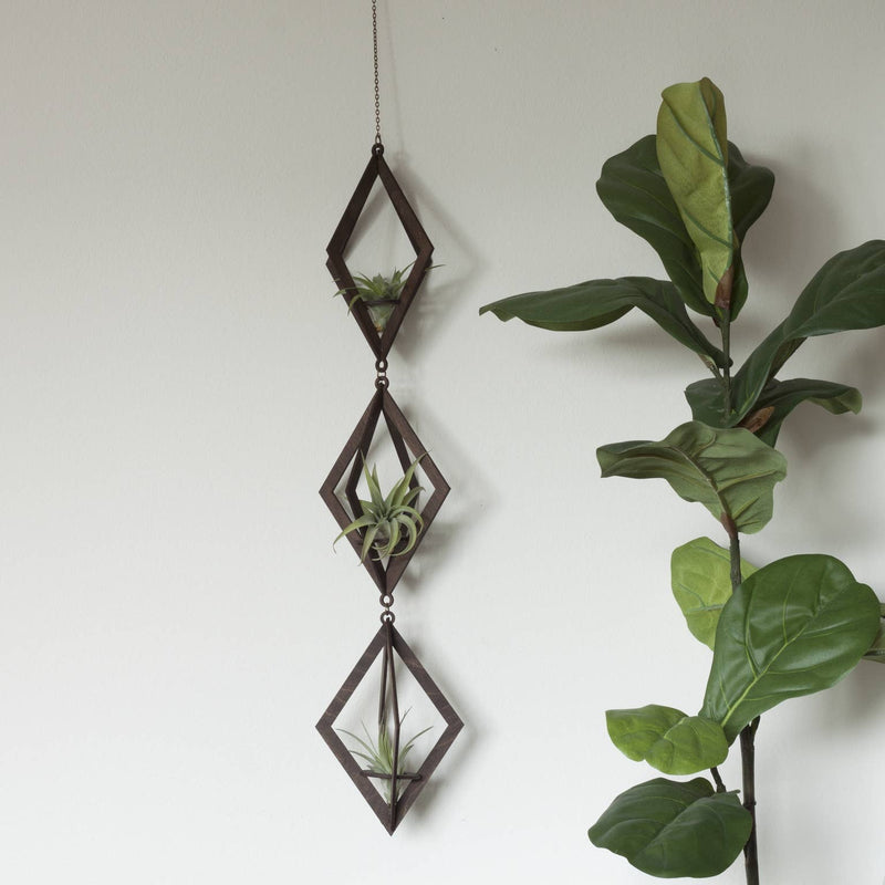 Trio | Walnut Air Plant Hanger