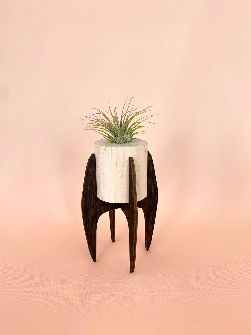 Rocket | mini desk air plant stand
