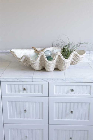Large Seashell Decor