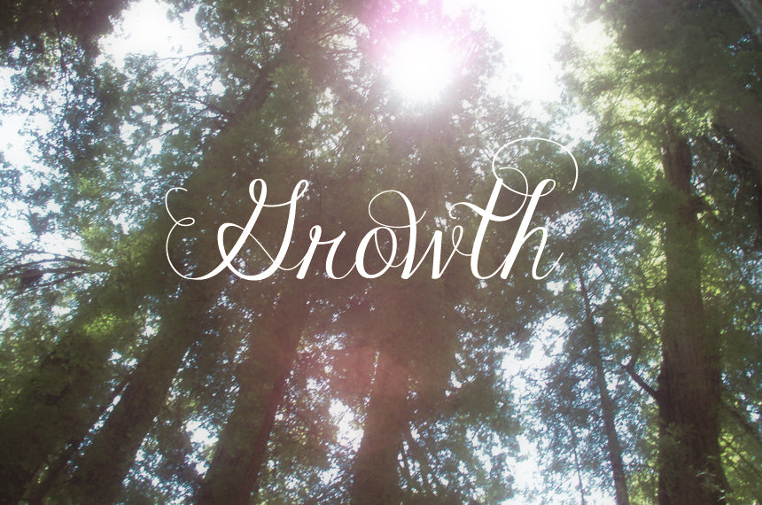 Redwood-Growth