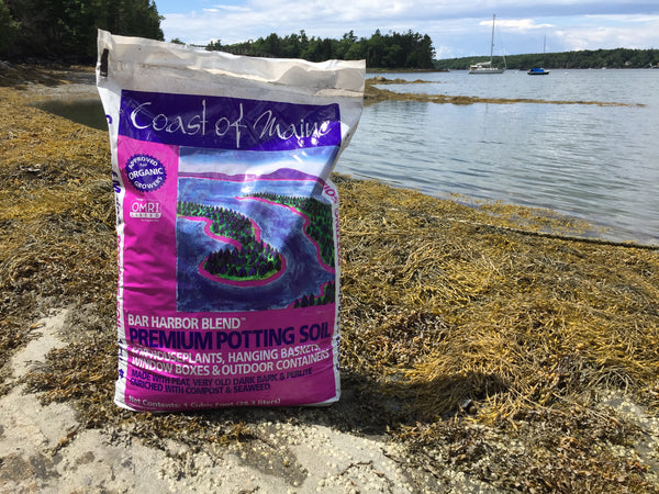 Bar Harbor Blend Premium Potting Soil Coast Of Maine