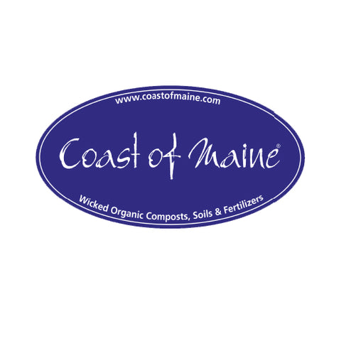 Coast of Maine - Sticker - Slap