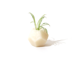 Keli by HR Design Studio, wax fragrance vase at by-PT online store