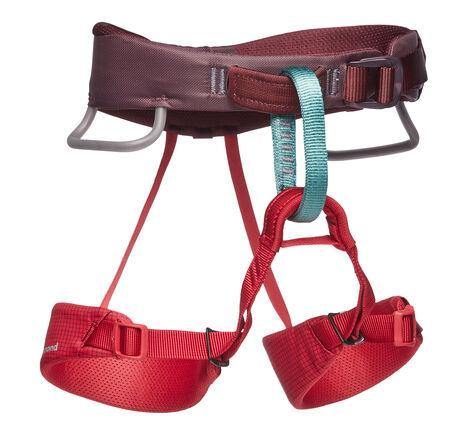 Black Diamond Momentum Kids Climbing Harness - All Out Kids Gear