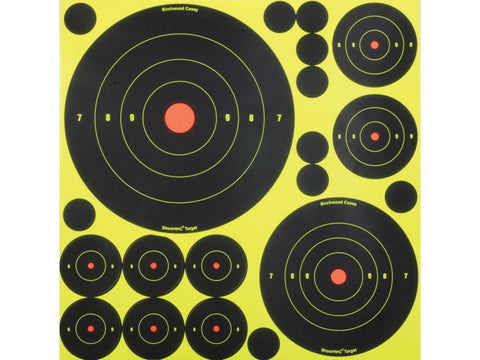 Birchwood Casey Shoot-N-C Self Adhesive Targetss Variety Pack