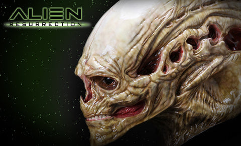 Alien Newborn Life-Size Head Prop Replica by CoolProps and Sideshow Collectibles