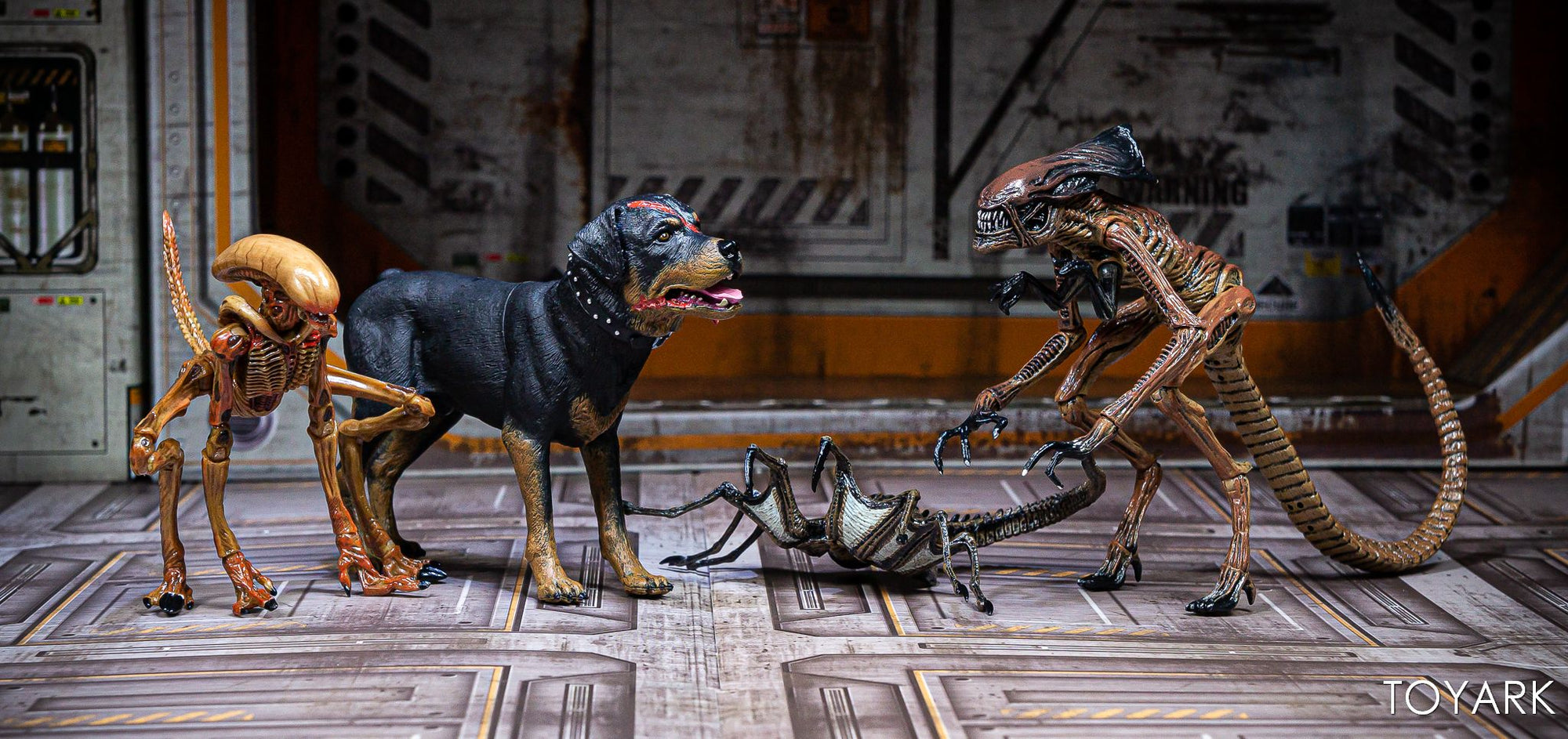 NECA - Alien 3 - Accessory Pack - Creature Pack - Collectors Row Inc.