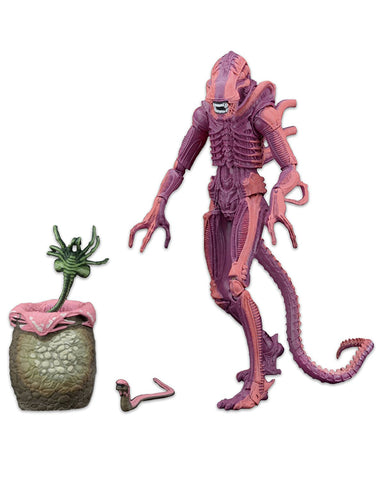 "NECA Aliens Scale Warrior (Arcade Appearance) Action Figure, 7"" - Collectors Row Inc."