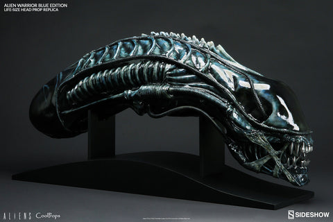 Alien Warrior Blue Edition Life-Size Head Prop Replica by CoolProps and Sideshow Collectibles