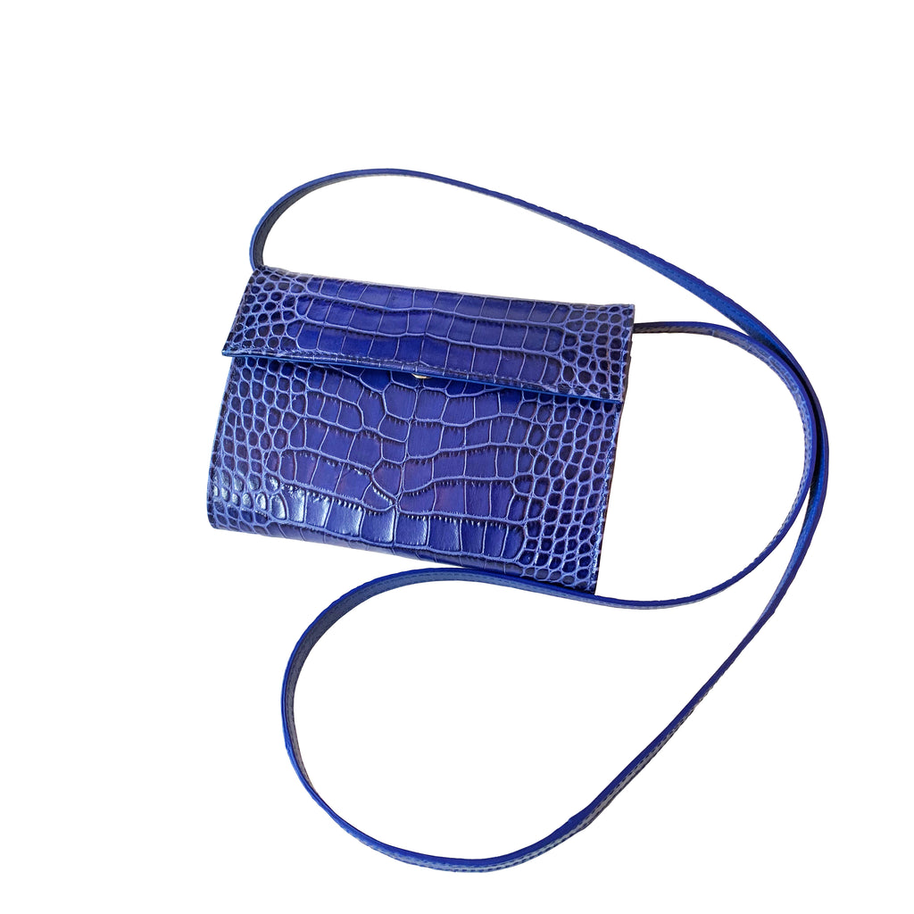 Sera Bella Blue Purse