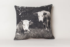 Cows- Switzerland Cushion