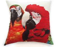 Two Macaws Pillow